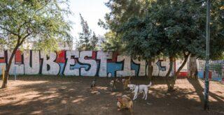 Νέα Σμύρνη - Πάρκο σκυλιών στη